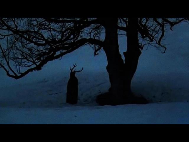 :of the wand x the moon: | megin runar