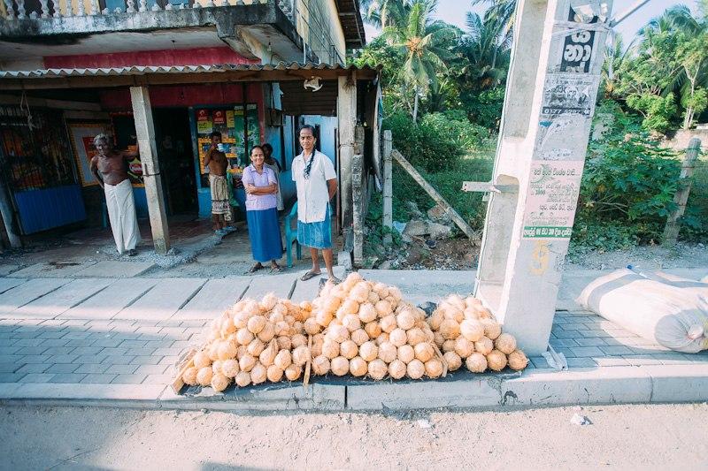 Шри-Ланка общественным транспортом. Ненапряжное путешествие. Март-Апрель 2015.