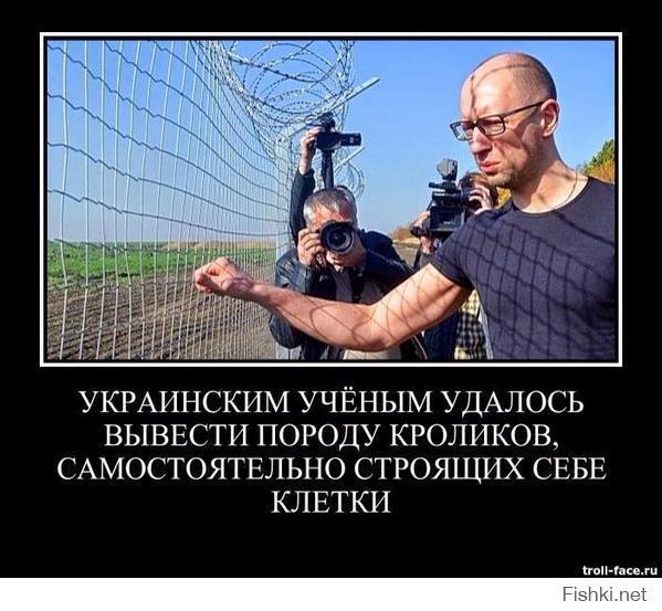 oTyb_GknnYc.jpg
