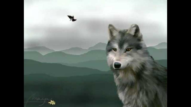 Банда Москвы Раненый белый волк