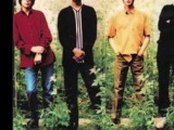 Ocean Colour Scene - 100 Mile High City