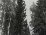 Леонид Кострица - Потерял Покой