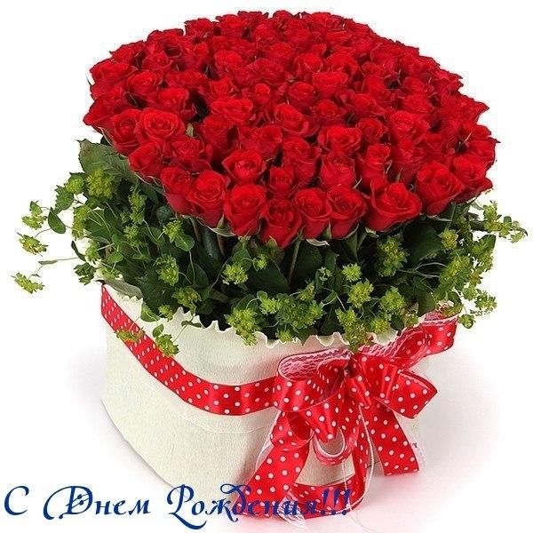 http://cs622416.vk.me/v622416715/6ec3/g9u8_r_snTs.jpg