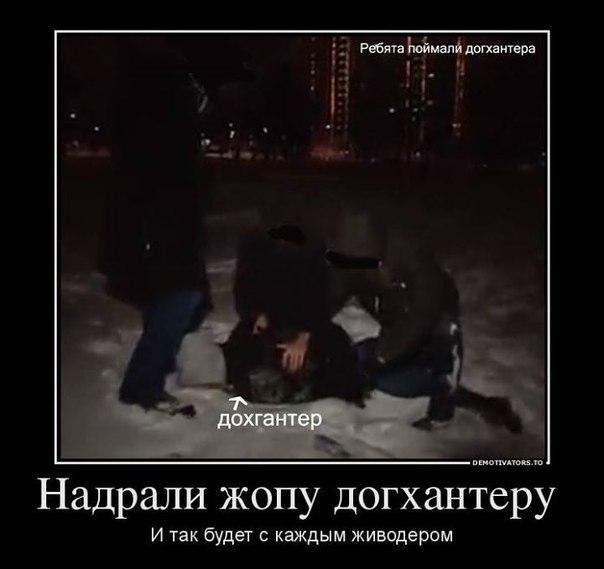 Акция Догхантеров 25.01.14 QT3plzeD0Wk