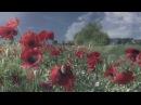 Просто помнить... Джон Уильямс - John Williams -Theme From Schindlers List