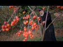 TERIREM - NEKTARIA -BYZANTINE MUSIC-ВИЗАНТИЙСКАЯ МУЗЫКА