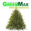 Питомник декоративных растений GreenMax.kz