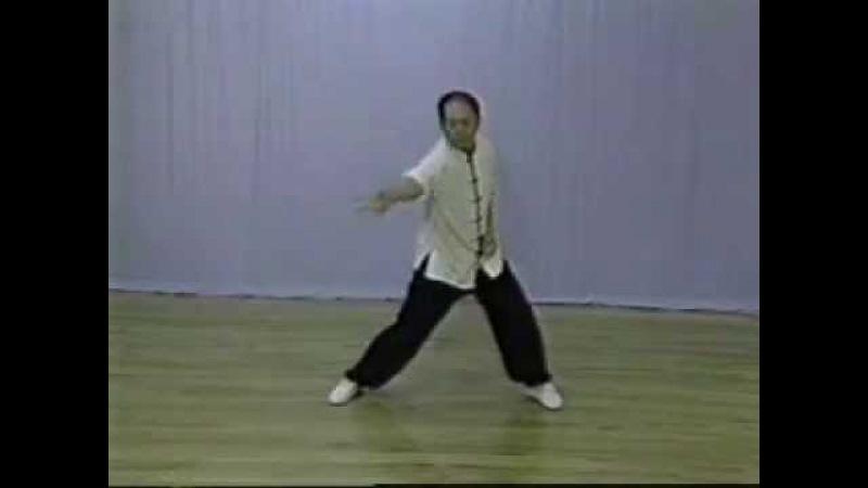 Ян Цзюньмин. Тайцзицюань. Белый журавль. Жетский цигун (Yang Jwing Ming. White Crane. Hard Qigong).