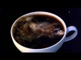 Coffee Creamer high speed video 2000fps 30fps playback.avi