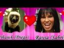 Noivado de Mihawk Raysa in Orkut