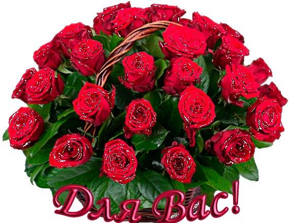 http://cs622420.vk.me/v622420861/16d81/IhFMFGBqcWI.jpg