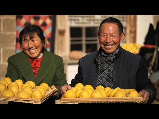 Китай на кончике языка 2 Истории основных блюд