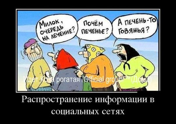 http://cs622421.vk.me/v622421019/12eb7/mIm8FklTQLs.jpg