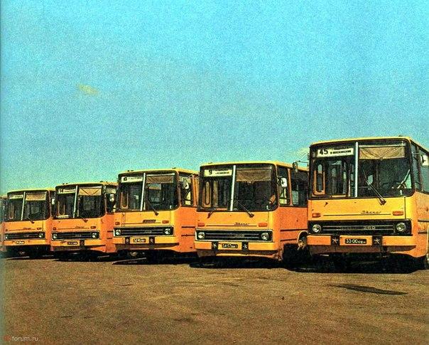 Автобусы Подольска. 1980-е