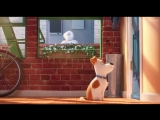Тайная жизнь домашних животных / Тизер-трейлер (дублированный)