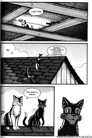 Манги коты воители скачать