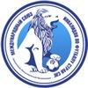 Международный союз инвалидов по футболу стран СН