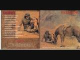 Warhorse - Burning