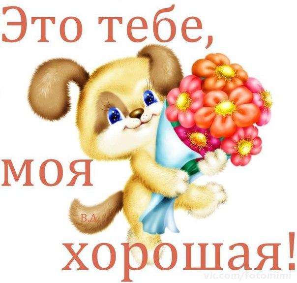 """Став """"Ванадий""""  6f4koeKjyx8"""