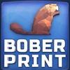 BoberPrint - 3D-печать в Великом Новгороде!