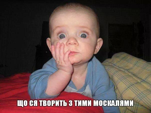 Россия в Париже настаивала на отсрочке вступления в силу зоны свободной торговли между Украиной и ЕС, - замглавы АП Елисеев - Цензор.НЕТ 2173