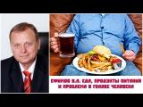 Ефимов В.А. Еда, продукты питания и проблема в голове человека
