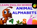 Animal Alphabet - Pre School - Learn English Words (Spelling) Video For Kids and Toddlers
