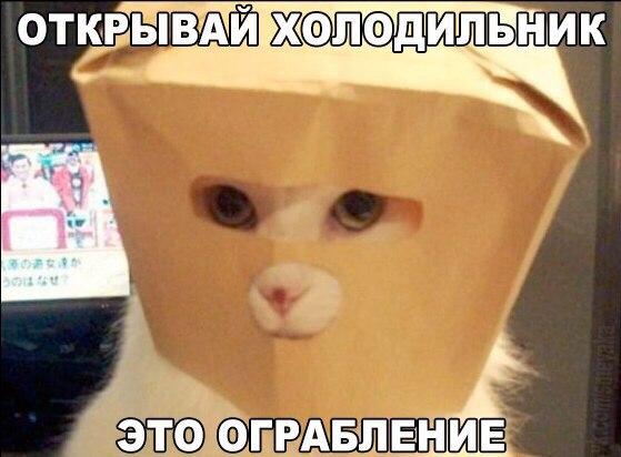 yDV3LqOwIuo.jpg