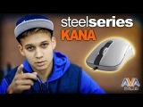 Обзор SteelSeries Kana от AVA.ua