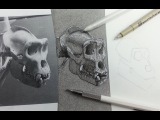 How to draw an ape skull Black &amp White Ink on Charcoal Background