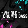 WORLD OF DRUM&BASS ( 19.09 MOSCOW / 14.11 SPB)