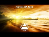 Ron Hagen &amp A.R.D.I. and Sarah Lynn-Gold In The Sky (Signum Mix) + Lyrics