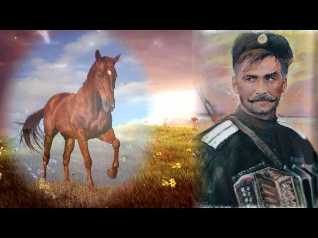 Казачья песня Я за коня готов отдать гармонь Cossack song