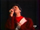 ВИА Песняры (сол. Валерий Дайнеко) - Зачараваная Зачарованная моя (белор. муз. Игоря Лученка - ст. Геннадия Буравкина)
