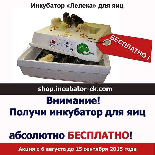 Получи бытовой инкубатор для