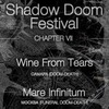2015.11.08 Shadow DOOM Festival. Chapter VII