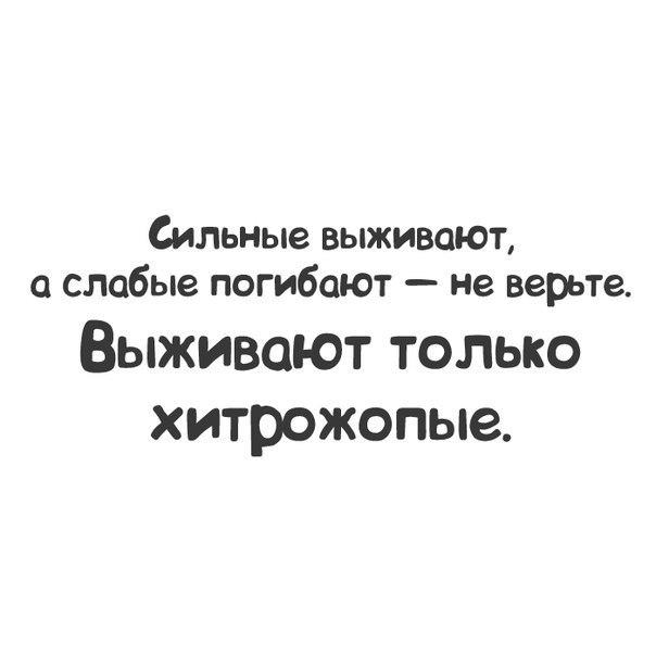 http://cs14113.vk.me/c622427/v622427567/676a/zBJYn40lkjk.jpg