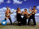 Red Hot Chili Peppers Californication Official Music Video