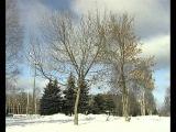 Гелена Великанова Идут белые снеги