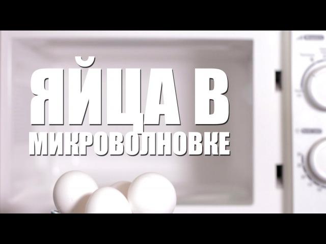 3 ЛАЙФХАКА С ЯЙЦАМИ В МИКРОВОЛНОВКЕ