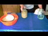Технология производства мицелия. 1 часть Приготовление зерна