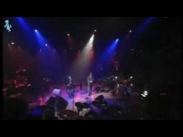 Dolores O`Riordan Zucchero - Pure Love (Puro Amore) - Widescreen / Live / LyRiCs