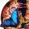 "Живые бабочки и бабочкарии от ""Флай-Флай"""