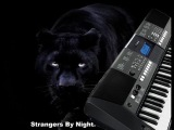 Strangers by night (cover) Strangers by night,C. C. Catch