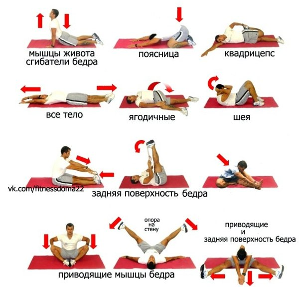 Упражнения для всего тела в домашних условиях для девушек видео