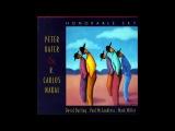 Peter Kater &amp R Carlos Nakai - Essence