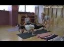 Mayurasana with preparation with Senior Iyengar Teacher Carrie Owerko YouTube