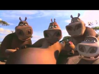 Песенка бегемота Мото-Мото (Мадагаскар)