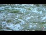 Река любви. Исп. Наталья Бучинская