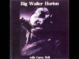 Big Walter Horton- Christine